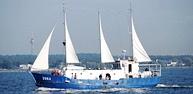 Liinilaev Juku