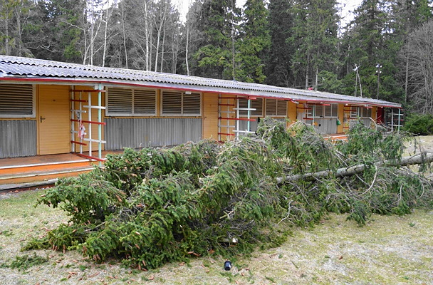 Õnnega pooleks  - kui üleeelmisel aastal murdus tormiga kuusk sama maja katusele, siis nüüd läks õnneks.