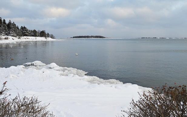 Nagu käesolevalt fotolt näha, on 13. jaanuari seisuga Aegna ja Rohuneeme vaheline mereala taaskord jäävaba.